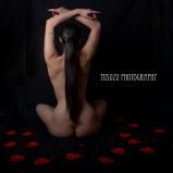 valentine-17wm